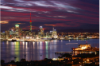 Gay Auckland main image