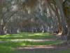 Kearney Mansion Park